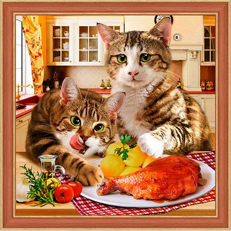Malen nach Zahlen Bild Katzen Mittag - AZ-1730 von Sonstiger Hersteller