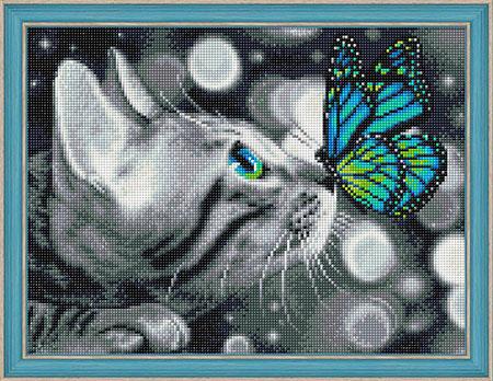 Bengalkatze und Schmetterling
