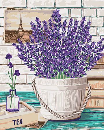 Malen nach Zahlen Bild Lavendel-Aroma - B080 von Sonstiger Hersteller