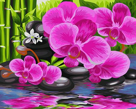 Malen nach Zahlen Bild Orientalischer Garten - B081 von Sonstiger Hersteller