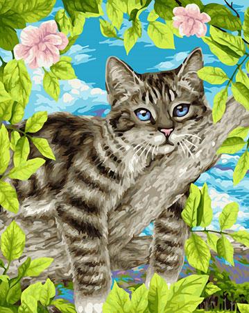 Kätzchen auf de Baum