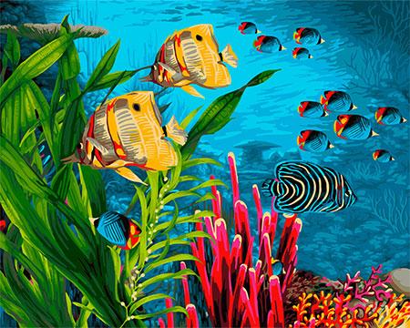 Malen nach Zahlen Bild Korallenriff - H104 von Sonstiger Hersteller