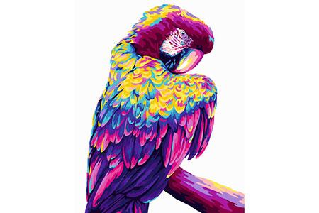 Malen nach Zahlen Bild Pop Art Papagei - H140 von Artibalta