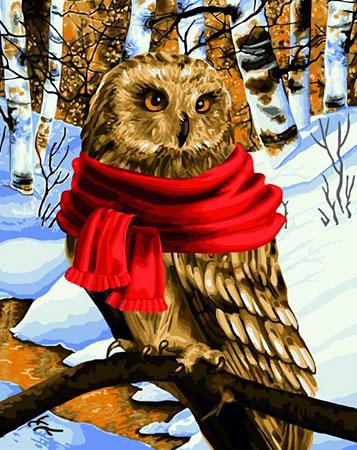 Eule im Winter