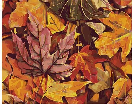 Malen nach Zahlen Bild Farbenfrohe Herbstblätter - T40500306 von Artibalta