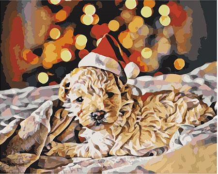 Malen nach Zahlen Bild Kleiner Weihnachtswelpe - T40500310 von Sonstiger Hersteller
