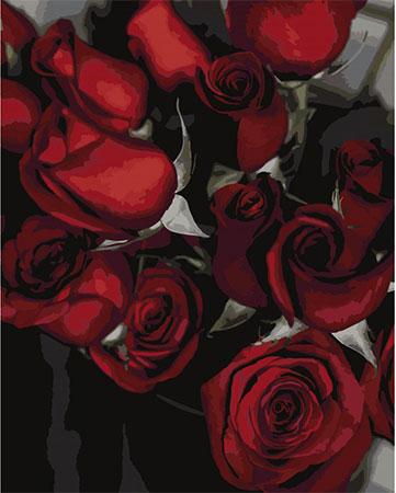 Malen nach Zahlen Bild Roter Rosenstrauch - T40500312 von Sonstiger Hersteller