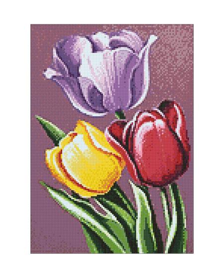 Tulpenaroma
