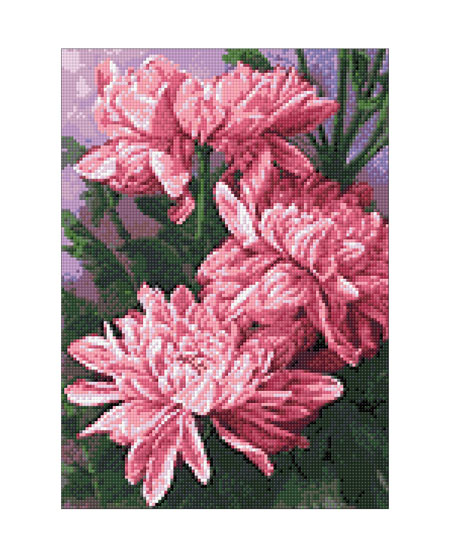 Malen nach Zahlen Bild Gänseblümchen - WD025 von Sonstiger Hersteller