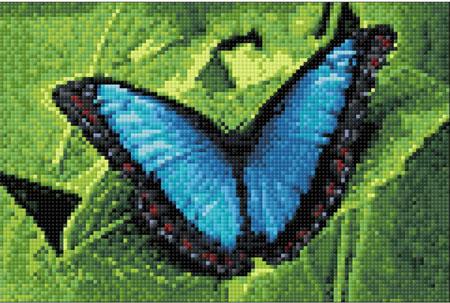 Malen nach Zahlen Bild Blauer Schmetterling - WD055 von Sonstiger Hersteller