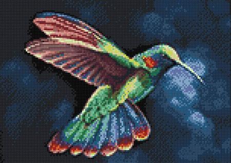 Malen nach Zahlen Bild Bunter Kolibri - WD058 von Sonstiger Hersteller
