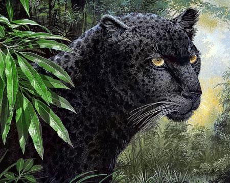 Malen nach Zahlen Bild Schwarzer Panther - WD072 von Sonstiger Hersteller