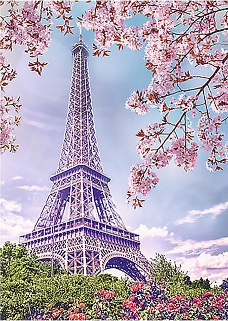 Malen nach Zahlen Bild Frühling in Paris - WD124 von Sonstiger Hersteller