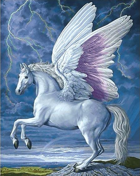 Malen nach Zahlen Bild Pegasus - WD176 von Sonstiger Hersteller