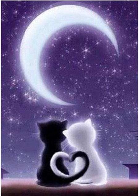 Liebespaar im Mondlicht