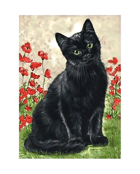 Malen nach Zahlen Bild Schwarze Katze - WD208 von Sonstiger Hersteller