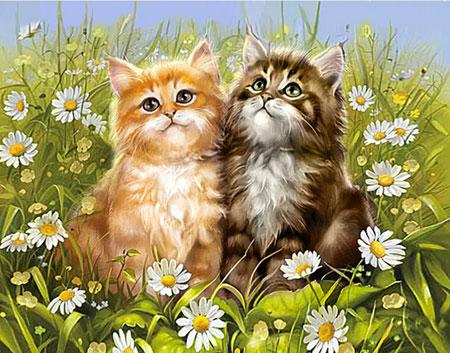 Malen nach Zahlen Bild Sommerliche Kätzchen - WD209 von Sonstiger Hersteller