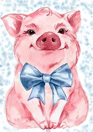 Malen nach Zahlen Bild Süßes Schweinchen - WD2289 von Sonstiger Hersteller