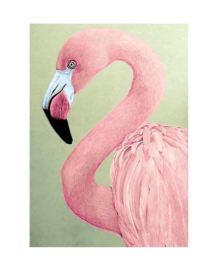 Malen nach Zahlen Bild Pinker Flamingo - WD232 von Sonstiger Hersteller