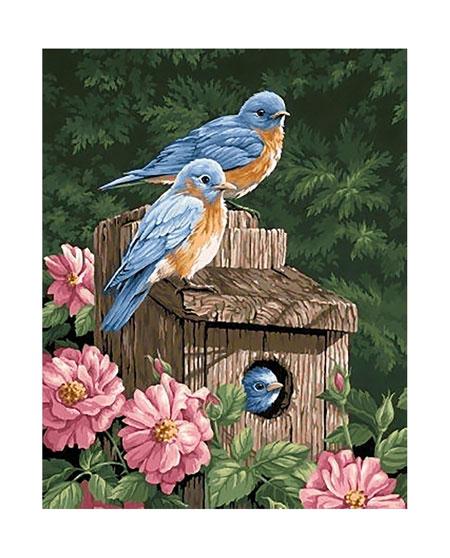 Malen nach Zahlen Bild Vogelfamilie - WD234 von Sonstiger Hersteller