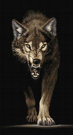 Anpirschender Wolf