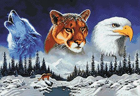 Malen nach Zahlen Bild Amerikanische Wildtiere - WD2412 von Sonstiger Hersteller