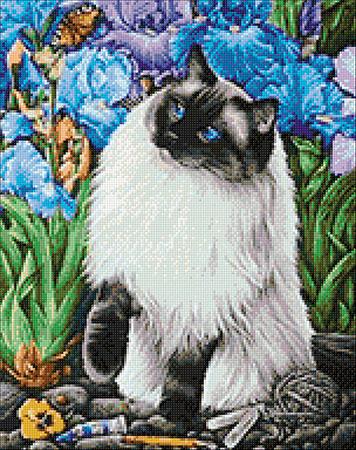 Malen nach Zahlen Bild Katze im Garten - WD2419 von Sonstiger Hersteller