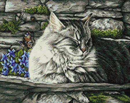 Malen nach Zahlen Bild Träumende Katze - WD2421 von Sonstiger Hersteller