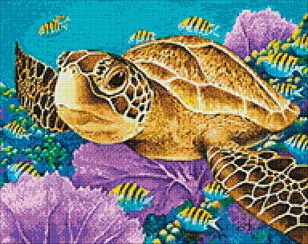 Malen nach Zahlen Bild Grüne Meeresschildkröte - WD2428 von Sonstiger Hersteller