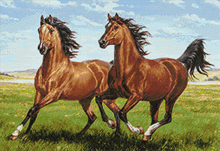 Malen nach Zahlen Bild Galoppierende Pferde - WD2457 von Sonstiger Hersteller