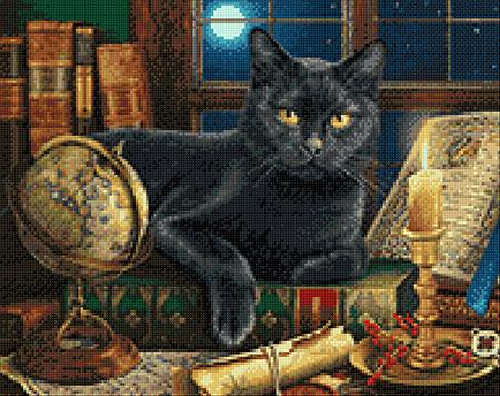 Malen nach Zahlen Bild Belesene Katze - WD2485 von Artibalta