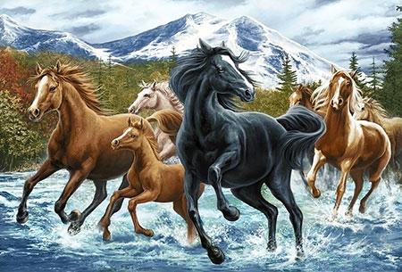 Malen nach Zahlen Bild Pferdeherde in den Bergen - WD2499 von Artibalta