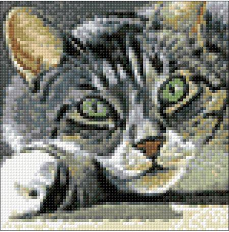 Malen nach Zahlen Bild Fesselnder Blick - WD274 von Artibalta