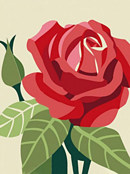 Malen nach Zahlen Bild Rosenblüte - WD305 von Sonstiger Hersteller