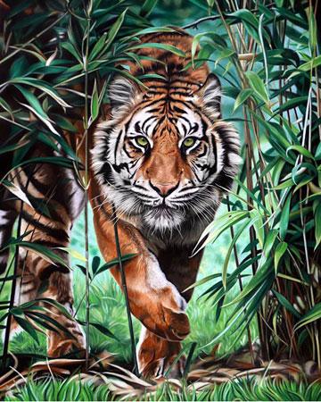 Malen nach Zahlen Bild Gefährlicher Tiger - WD310 von Sonstiger Hersteller