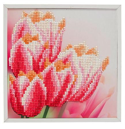 Malen nach Zahlen Bild Tulpen - CAK-2020D von Sonstiger Hersteller