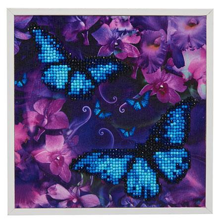 Malen nach Zahlen Bild Blaue Schmetterlinge - CAK-2020E von Sonstiger Hersteller