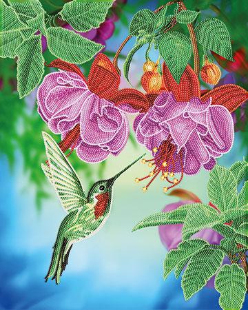 Malen nach Zahlen Bild Bunter Kolibri - CAK-A100L von Craft Buddy