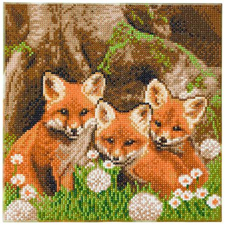 Malen nach Zahlen Bild Niedliche Fuchsjungen - CAK-A116M von Craft Buddy