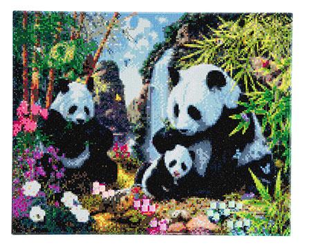Malen nach Zahlen Bild Im Tal der Pandas - CAK-A21 von Craft Buddy