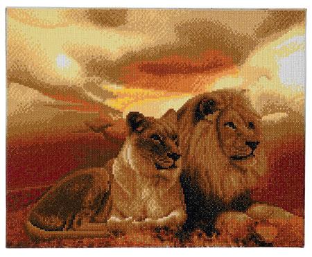 Löwenpaar im Sonnenuntergang