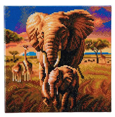 Malen nach Zahlen Bild Elefanten in der Savanne - CAK-A68 von Sonstiger Hersteller