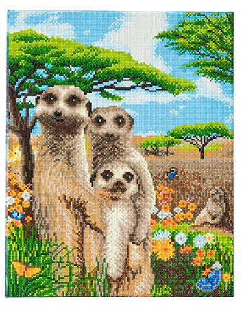 Erdmännchen-Familie
