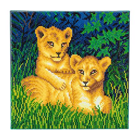 Niedliche Löwenwelpen
