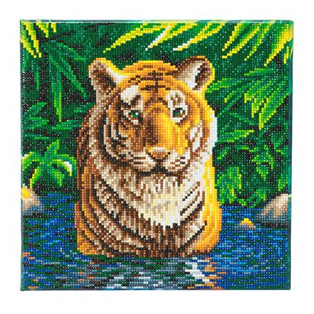 Malen nach Zahlen Bild Tiger im Wasser - CAK-A74 von Sonstiger Hersteller