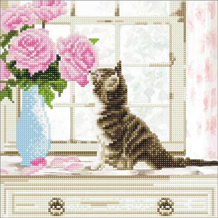 Malen nach Zahlen Bild Niedliche Katze - CAK-A93M von Craft Buddy