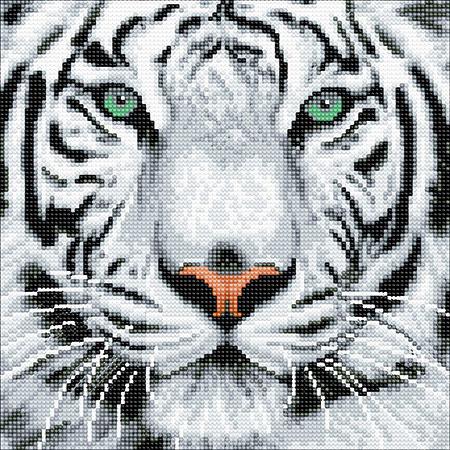 Malen nach Zahlen Bild Weißer Tiger - CAK-A96M von Sonstiger Hersteller