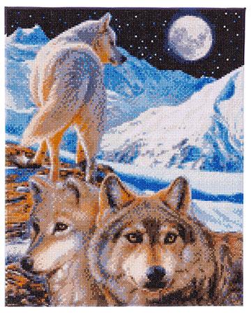 Malen nach Zahlen Bild Einsame Wölfe - CAK-CH2 von Sonstiger Hersteller