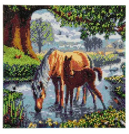 Malen nach Zahlen Bild Ponys im Fluss - CAK-SC1 von Sonstiger Hersteller