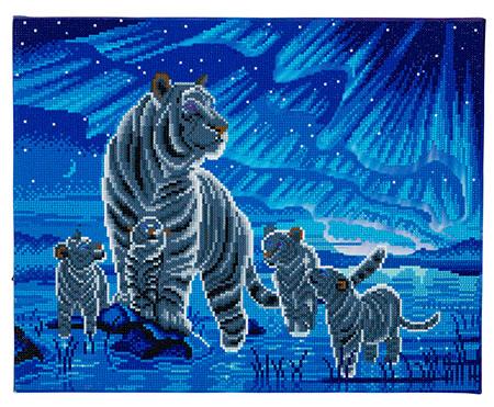 Tigerfamilie und Nordlichter